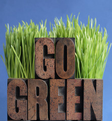go green with grass on blue