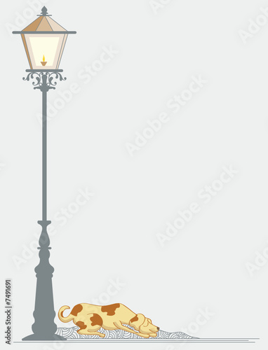 Dog sleeping near street Lamp and smiling