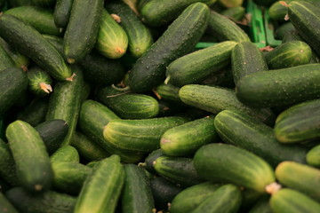cucumbers in the market