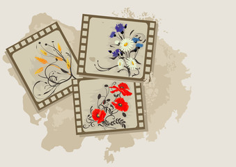 Background with summer flowers photos vintage.