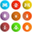 bug signs