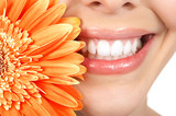 Fototapety Woman teeth