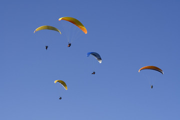 Paragliders flying in formation