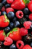 Fototapety Assorted fresh berries