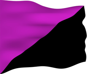 Anarchist Feminism Flag