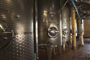 Winemaker Checking Wine Vats