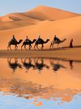 Fototapety Camel Caravan in the Sahara Desert