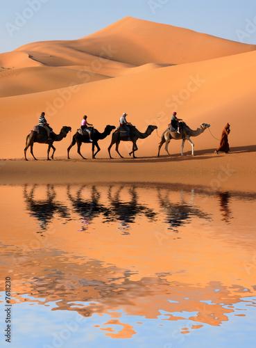 Fotobehang Marokko Camel Caravan in the Sahara Desert