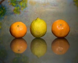 Mandarinen und Zitrone