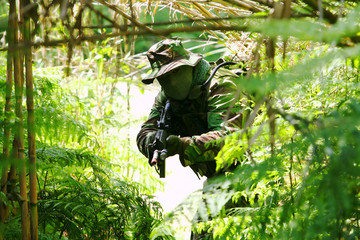 Military training combat - forest/jungle amvironment