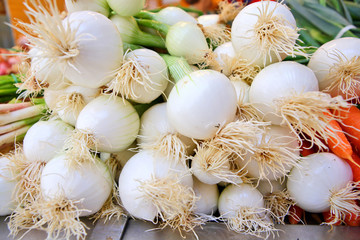 Spicy fresh spring onions