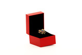 Brooch in a red box poster