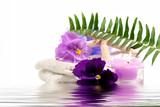 Fototapety Spa Items Purple