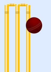 Cricket ball in play