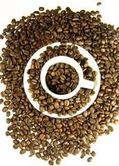 taza  rodeada de granos de café
