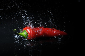 chili splash