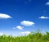 Grüne Wiese und blauer Himmel 2