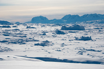 Ice field in Greenland