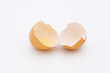 broken eggshells with eggwhite