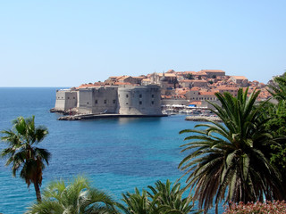 Dubrovnik view through palm trees