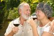 Seniors sipping wine