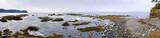 Pacific Northwest Beach Panoramic poster