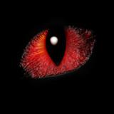 feline eye poster