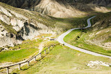 twist road between green hills poster