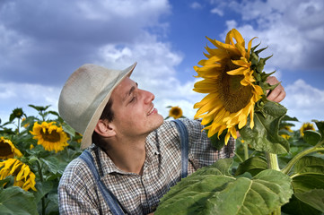 farmer in sunflower field with clouds
