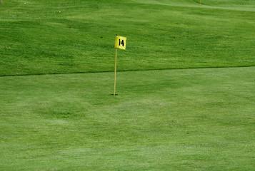 Pelouse de golf