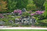Fototapety Flowering Japanese garden