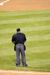 Umpire Standing in Infield