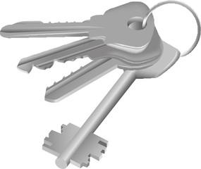 vector Four keys on ring