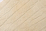 Fototapety Natural leather texture
