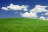 Mown grass hills under a dreamy sky poster