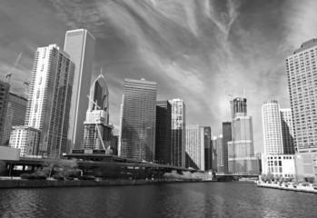 The Chicago skyline