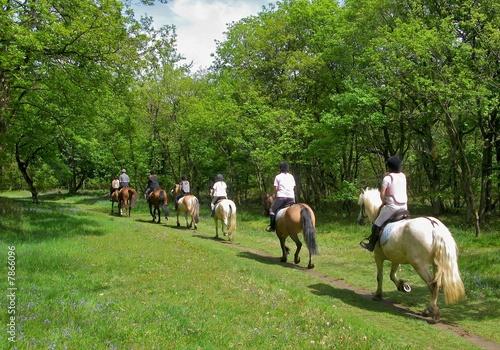 Cavaliers randonnant à cheval