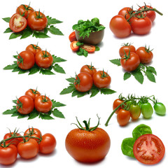 Tomato Sampler with clipping paths