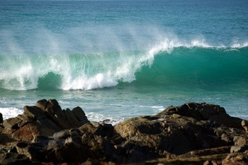 autumn swell
