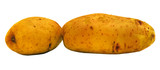 2 potato on a white background