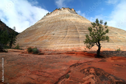 Rock formation in Zion national park - 7903039