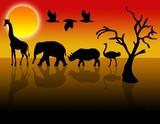 Tiere in der Wüste poster