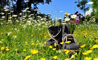 Wanderschuhe Blumenwiese Sommer