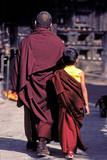 moines au Népal poster