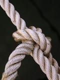noeud et corde raide poster
