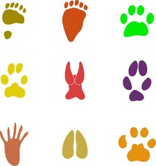 pawprint shapes