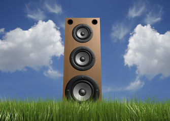 Speaker in grass