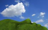 Human grassed land poster