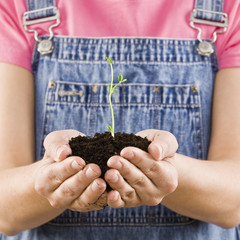 Young woman holding seedling and soil