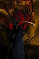 Der Herr des Schattenreiches